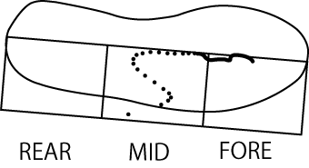 MFSにおける圧中心の軌跡
