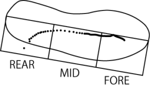 RFSにおける圧中心の軌跡