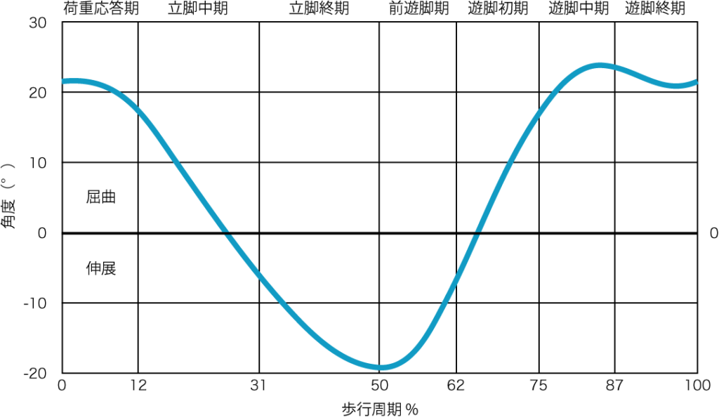 矢状面における股関節の運動