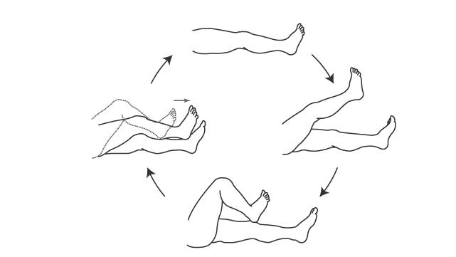 踵膝試験:4動作