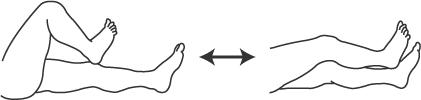 踵膝試験:踵を脛の上で滑らせるのを反復