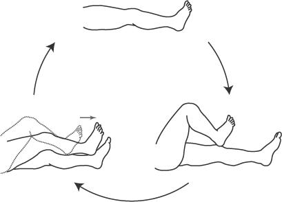 踵膝試験:3動作