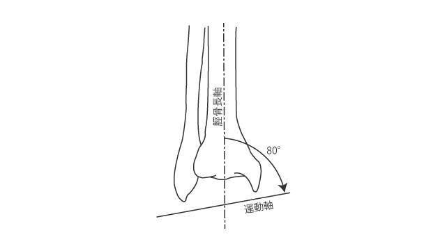 前額面での距腿関節の運動軸