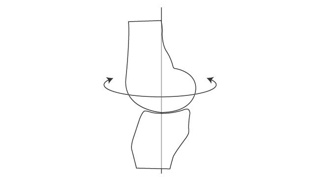 膝関節における軸回旋